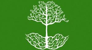 Teaching Roots Logo